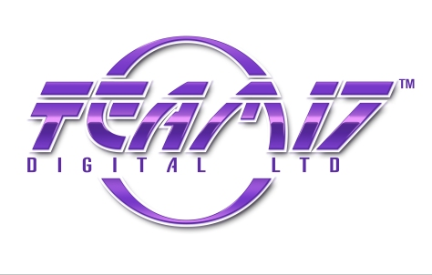 team17_digital_logo
